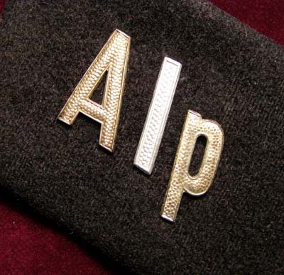 NSKK Staff Unit Collar Patch 'Alp' (Alpenland).